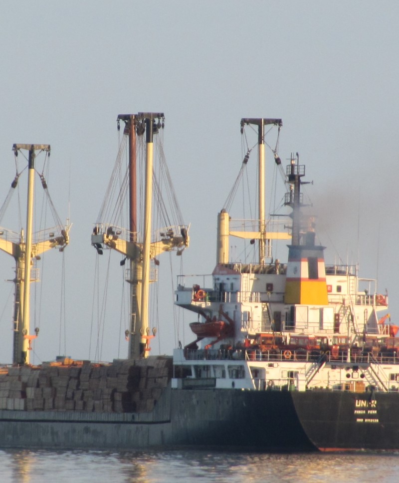 IMO: 8113138 DWT: 8589 T